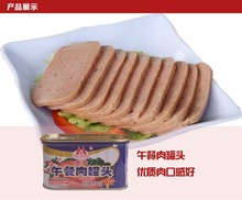 198G CANNED PORK LUNCHEON MEAT
