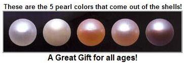 5 pearls.jpg