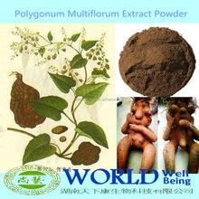 100% Natural He Shou Wu Extract Powder/Fo-ti Root Extract/Fo-ti Extract Powder