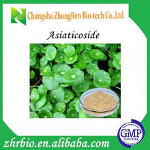 Hot Sales Gotu Kola Extract Triterpenes 10%-80%