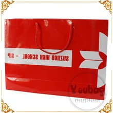 Glossy printed ribbon handle retail shopping paper bag