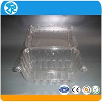 disposable pet large flat plastic containers