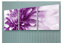 100%hand flower decorative paintings picture on natural scenery SY403
