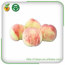 Chinese Kongfu Fresh Crisp Sweet Peach