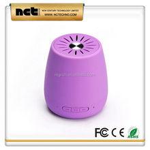 Useful hot sell hidden radio and bluetooth speaker