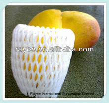 Fruit Protection Packing Net