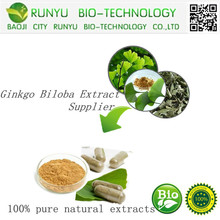 GMP High quality Natural organic ginkgo biloba extract supplier; Ginkgo Biloba Extract Powder by HPLC CAS: 90045-36-6
