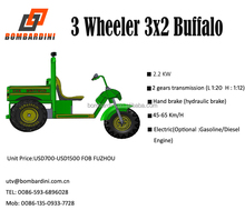 3 wheeler Electric/Diesel/Gasoline UTV/Utility Vehicle