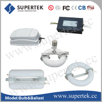 induction lamp grow light kit with 5 years warranty,100,000hrs lifespan