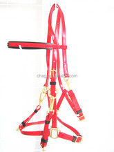 adjustable horse racing endurance bridle with brass fittings