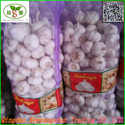 2015 New Crop Fresh Chinese Garlic:4.5cm up