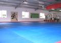 fuente de la fábrica de judo de lucha libre esteras/alfombrillas esteras/alfombrillas taekwondo esteras/alfombrillas 30mm