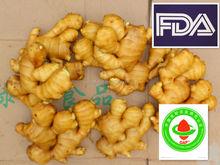 China fresh ginger