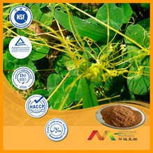 NSF-GMP Supplier provide health products Dodder Extract