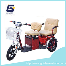 2015 New Electric Tricycle with Passenger Seat