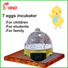 /product-gs/full-automatic-7-eggs-cheap-plastic-factories-in-turkey-for-sale-household-60075234940.html