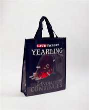 cheap bag ,bag for shopping , ppwoven bag