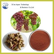 Water soluble grape seed extract 95%,grape seed extractpowder 95%