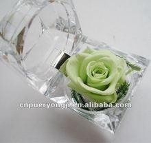 first brand preserved flower