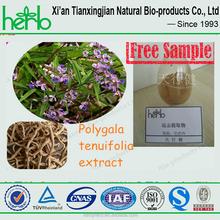 Polygala tenuifolia P.E/Thinleaf Milkwort Root-bark