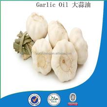 hot sale top quality Garlic oil