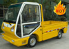 New Condition china made in ce approved mini truck with hydraulic