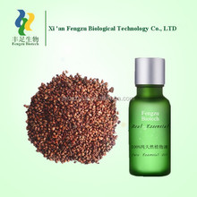Competitive price grape seed oil