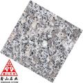 Pulidas losas de granito G602 a la venta