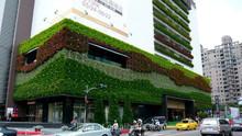 Yapay dikey bahçe yeşil ağaç duvar, bitki yeşil duvar, abs plastik çiçek yetiştiricilerinin duvarı bitkileri