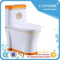 B1030 Ceramic Brown Colour Toilet