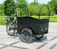 36V 250W Dutch popular electric three wheel car cargo bike for sale