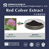 ISO standard red clover p.e. natural red clover extract