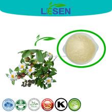 Natural Tea seed extract powder saponin 95% 98%