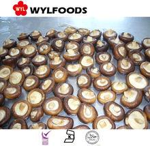 2015 new crop best price IQF shiitake mushroom