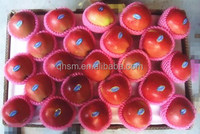 Fresh Chinese fuji red apple fruit for sale
