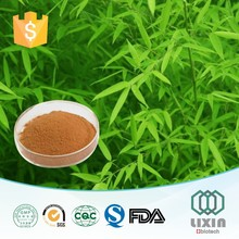 New arrival GMP OEM factory supply Herbal Extract Powder Bamboo Leaf Extract with 30% Flavoniods