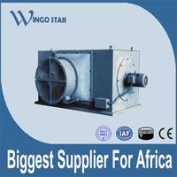 high voltage three phase electric motor specifications