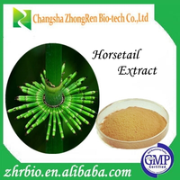 GMP standard Horsetail Extract,Best price Horsetail Extract powder
