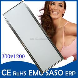 30*60cm 30*30cm 18w 22w 2200lm led lighting silver Ceiling led panel light for Living room bathroom kitchen