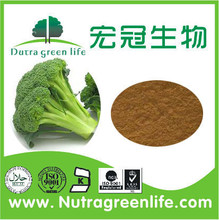 Natural herb plant extract High quality Manufacturer Frozen Broccoli Powder 5%;10% Sulforaphane
