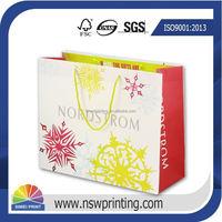 Promotional custom printing luxury branded paper bag