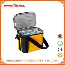 2015 new coming camping ice boxes custom 6 pack beer bottle cooler bags