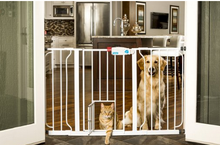 Top Selling Pet gate