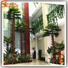 High quality palm tree bark mini palm tree plant for indoor large palm tree wedding decorations