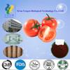 The strongest antioxidant lycopene powder,lycopene extract,502-65-8