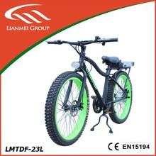 Green power 36v motor electric bike LMTDF-23L