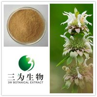 Traditional Herb Plant Lemon balm extract from GMP Manufacturer