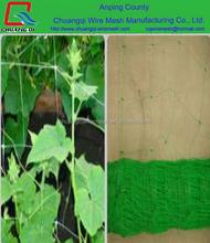 100% virgin material Plastic trellis net plant climbing support netting cucumber netting vine netting Pea & Bean netting