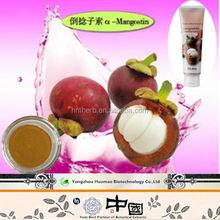 Factory hot sale Mangosteen extract powder in bulk