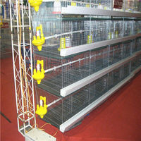Baby Chick Cage in Hot Galvanized wire A type or H type